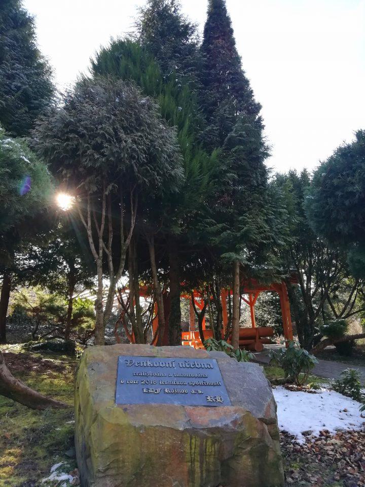 Arboretum Střední lesnické školy  (Foto: Kateřina Macháňová )