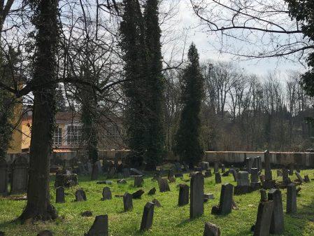 Židovský hřbitov / fotogalerie / IMG_3387