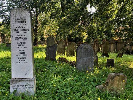 Židovský hřbitov / fotogalerie /