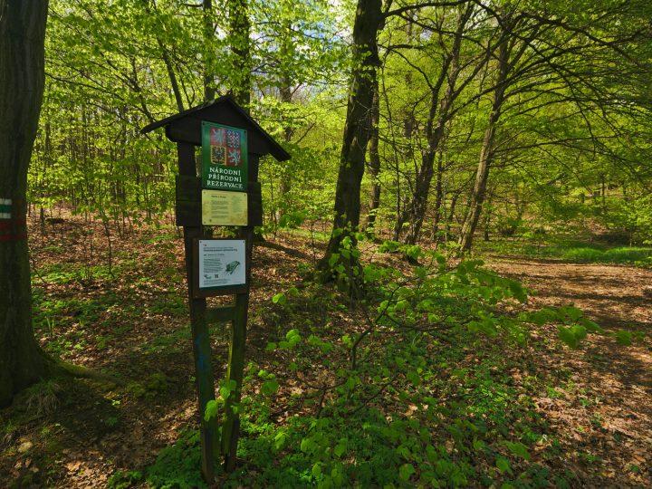 Národní přírodní rezervace Hůrka