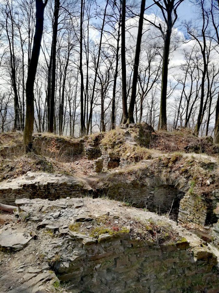 Zřícenina hradu Drahotuch  (Foto: Kateřina Macháňová)