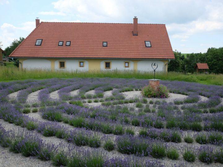Levandulový labyrint Lela (Foto: Levandulový labyrint Lela)