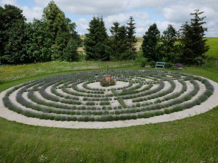 Levandulový labyrint Lela / fotogalerie /