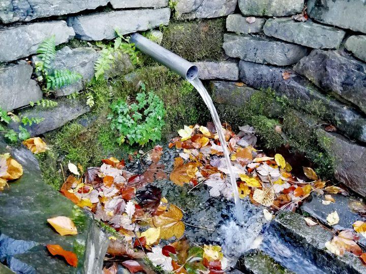 Javorová studánka (Foto: Kateřina Macháňová )